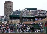Wrigley Field. Photo: CP