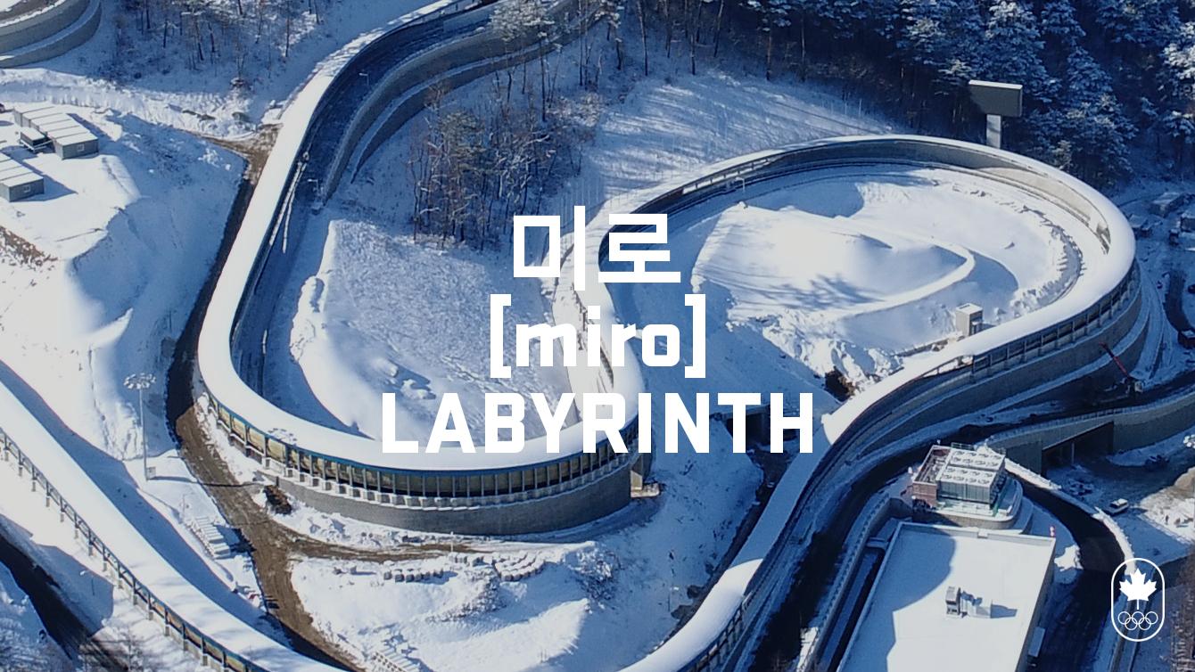 Team Canada - Bobsleigh Labyrinth hangul miro
