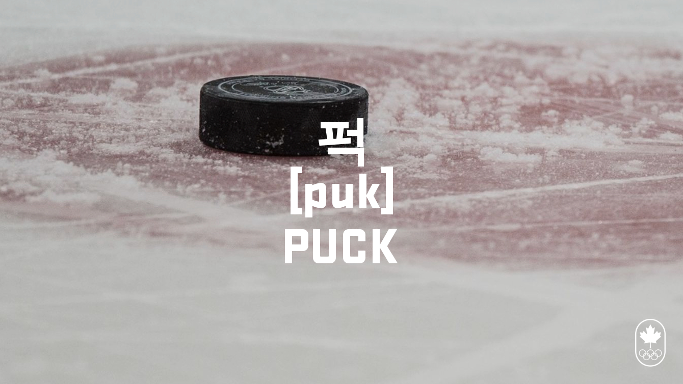 Team Canada - Hockey Puck puk
