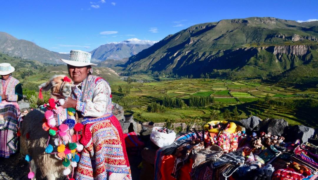 Peru- Llama and local