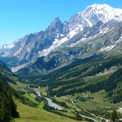 Scenic view of Mont Blanc mountains over greenery.