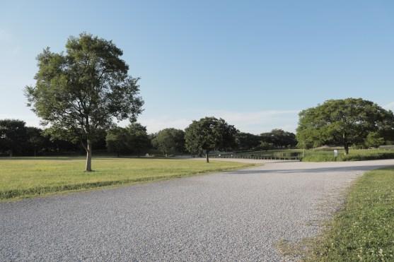 Musashinonomori Park